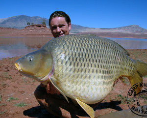 Carp Killers in Marokko