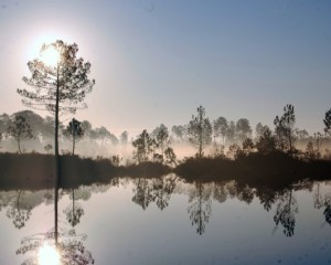 Lac de Curton
